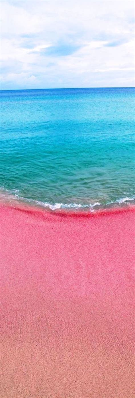 beaches with pink sand 25 best ideas about sand beach on pinterest pink sand