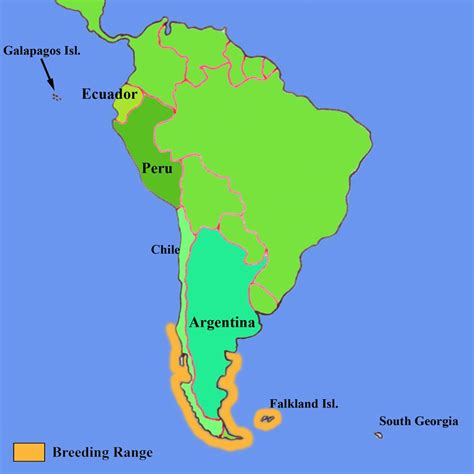 where do penguins live map magellanic penguin prairies to penguins