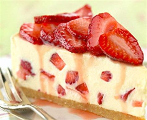 can dogs eat cheesecake 1000 images about on