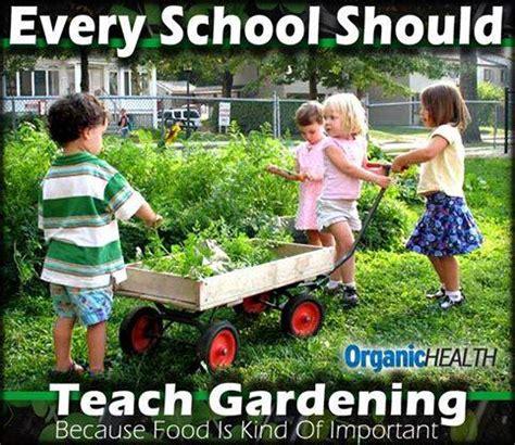 Gardening Memes - food gardening memes 1