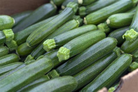 cuisiner les courgettes cuisine estivale 4 astuces pour bien cuisiner la