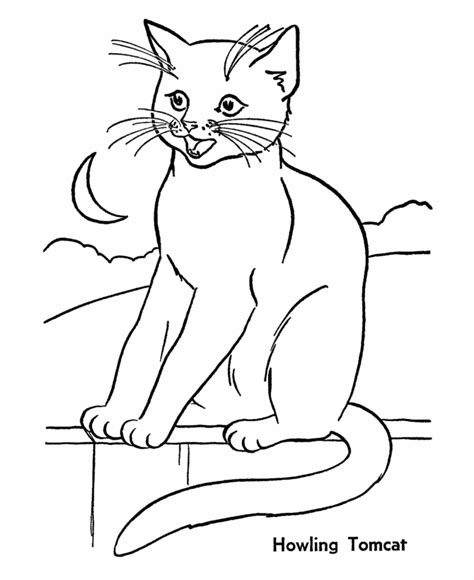 Animal Planet Coloring Pages animal planet coloring pages printable