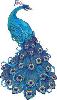 Aqua Color Bedroom - 513 best illustration peacocks images on pinterest peacock art peacocks and peacock painting