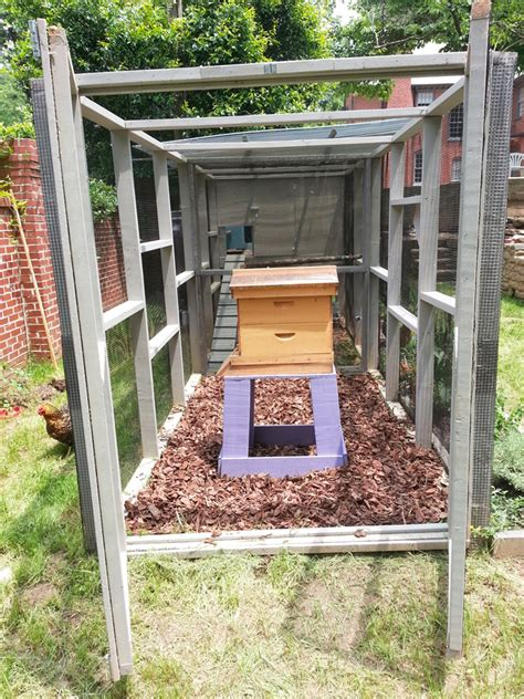 having a beehive in your backyard how to have a beehive in your backyard outdoor goods