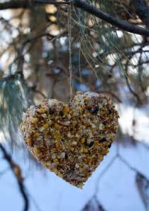 Simple homemade bird feeders skip to my lou