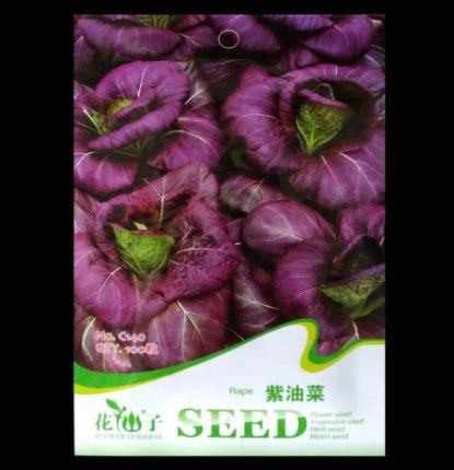 Harga Bibit Pakcoy Hidroponik benih retail asia pakcoy ungu 100 biji jual tanaman