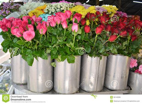 Flowers For Sale by Flowers For Sale At Market Royalty Free Stock Photo