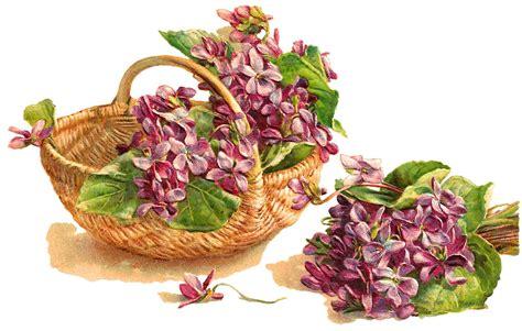 printable basket with flowers antique images digital violet flower basket free