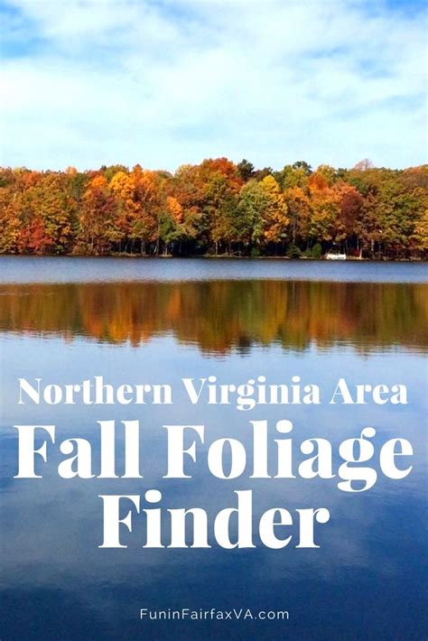 fall colors in virginia northern virginia fall foliage best places to see fall