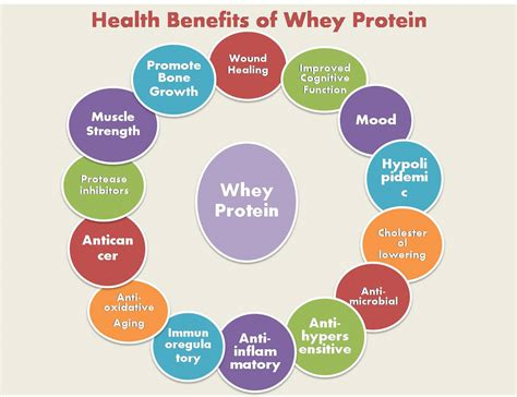 protein health benefits badminton khelmart org it s all about sports page 3