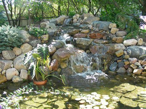 backyard water feature beautiful backyard water features great goats