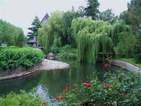 River Garden by Killiney Castle Travelmagma Shown In 8706487 Blogs