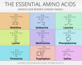 Essential amino acids foods with essential amino acids the