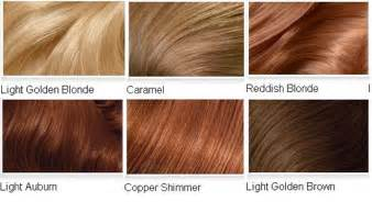 light brown hair color chart light golden brown hair colors archives vpfashion vpfashion
