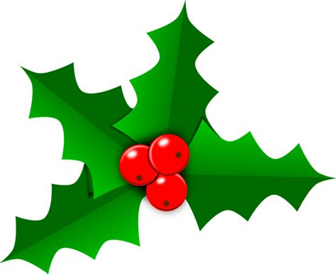 clipart holly free vector graphic holly christmas leaf green free