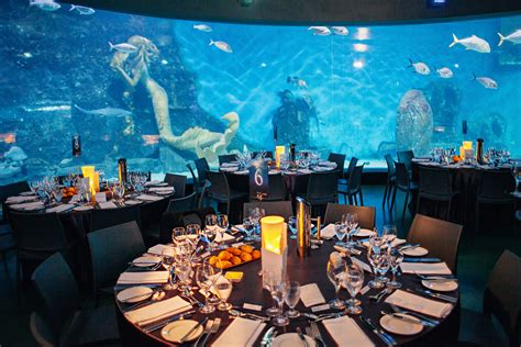Wedding Melbourne by Melbourne Aquarium Wedding Unique Wedding Venue
