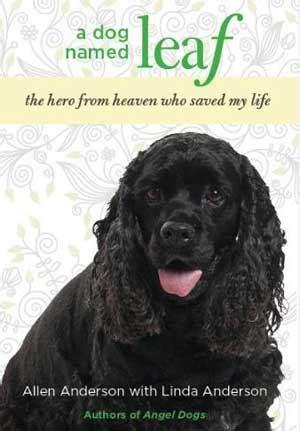 libro is there a dog un perro llamado leaf libro www doogweb es