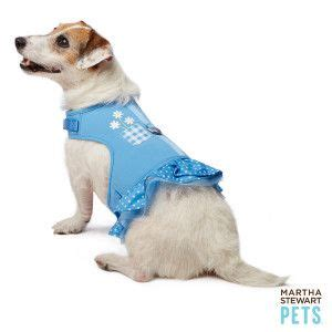 martha stewart harness 17 best images about stuff i gotta buy on leash supplies and