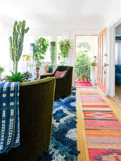 indoor trees  tropical plants  grow