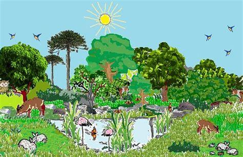 imagenes de ecosistemas naturales ciencias naturales los ecosistemas