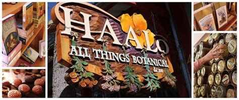 Sho Herbal Bsy 41 best s day ideas in nevada city images on
