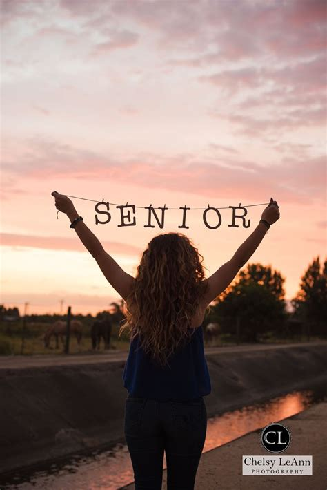 senior year get me to college