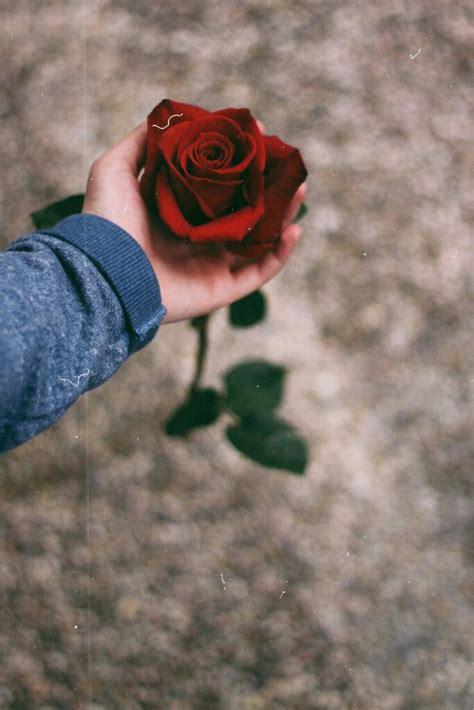 imagenes hipster de rosas tumblr doy fback image 2727977 by maria d on favim com