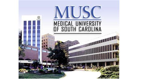 Executive Mba Of South Carolina by Of South Carolina Killed 58 Babies In