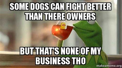 can dogs drink tea some dogs can fight better than there owners but that s none of my business tho