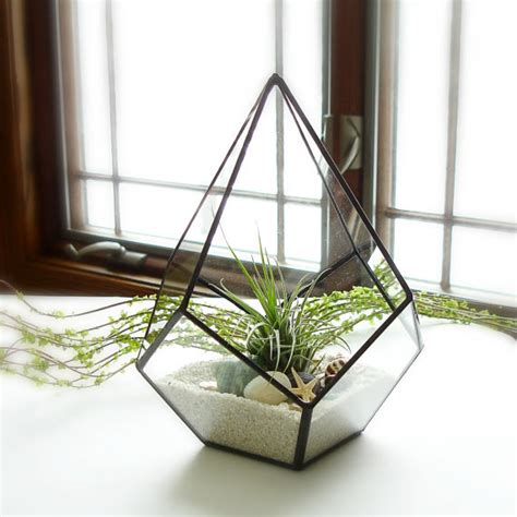 live plant office terrarium mini indoor desk garden office desk plants looks awesome which are best plant