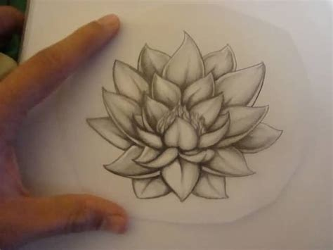 latest lotus tattoo design on paper tattooshunter com