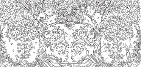 colouring book for adults johanna illustrator creates coloring books and sells more
