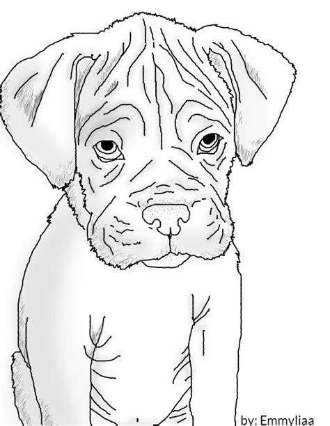 how to a boxer puppy how to draw a boxer puppy 55 best dogs images on dogs and puppies