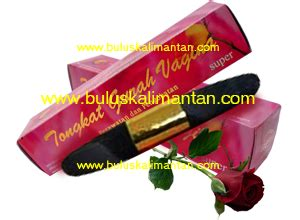 Tongkat Gurah Tgv khasiat tongkat gurah jasa review artikel website