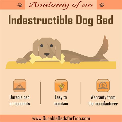 indestructible dog bed the anatomy of an indestructible dog bed