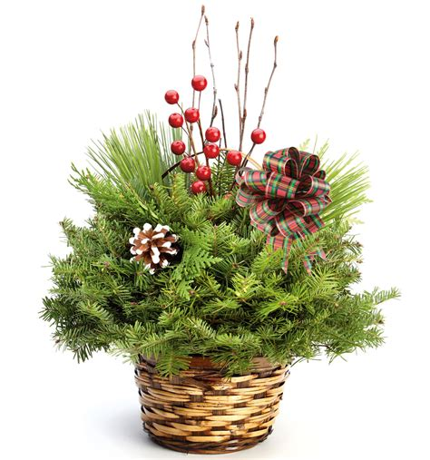 holiday centerpiece evergreen industries