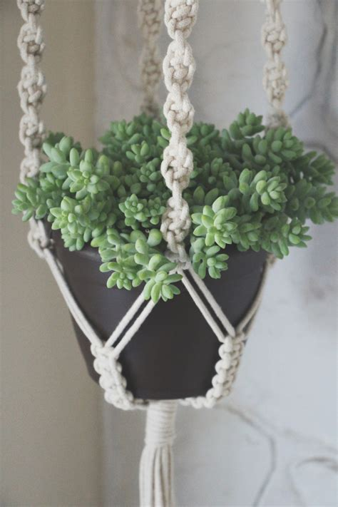 Macrame Plant Hangers - our giveaway needles leaves