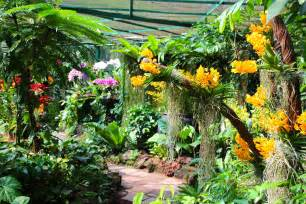 national orchid garden in singapore summer setting