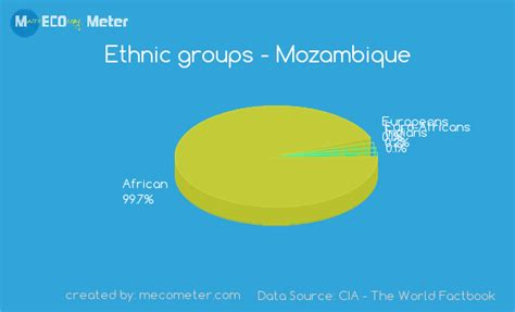 demographics of mozambique