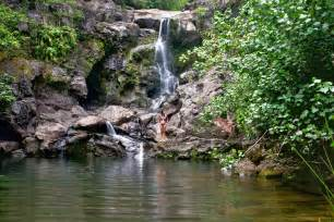 Vacation Homes In Hawaii - quot bamboo forest quot na ili ili haele maui guidebook