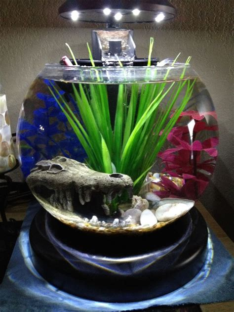 Small Heater For Betta Fish Bowl The 25 Best Ideas About Betta Fish Bowl On