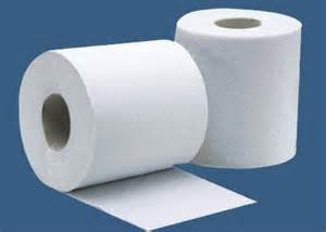 toilet paper roller when you first change the toilet paper