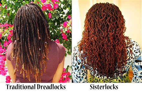 5 stages of locs dreads natural beauty salon spa dreadlocks healing herbs by rene natural organics