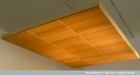 Bamboo Ceiling Book by Bamboo Ceiling