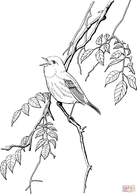yellow bird coloring page simple click to see printable version of kingfisher bird