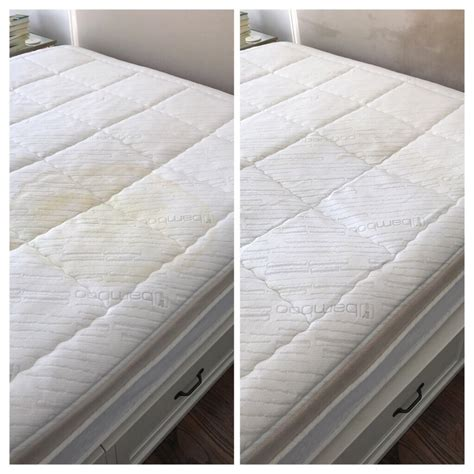 mattress with puppy stain before and after yelp