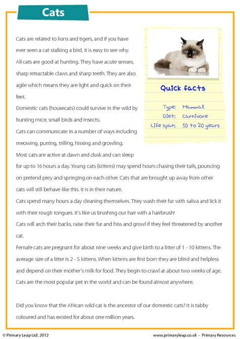 reading comprehension test online for cat cats reading comprehension
