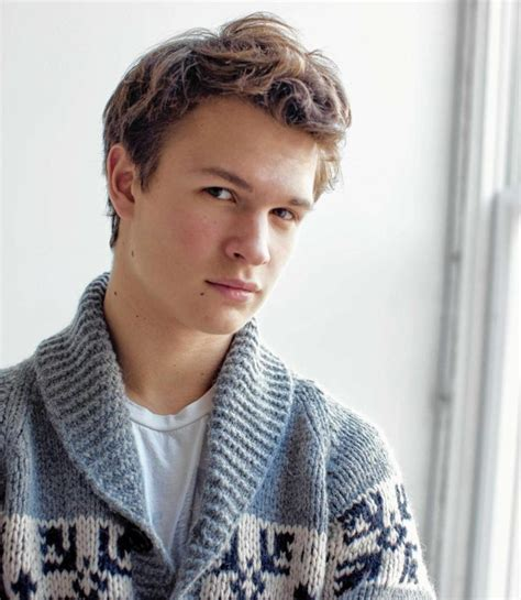 ansel elgort ansel elgort weight height and age