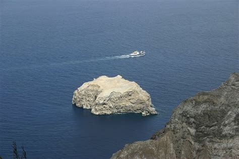 boatswain bird island boatswain bird island
