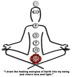 root chakra  foundation    energy system